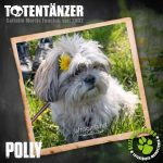 Totentänzer-Team Polly